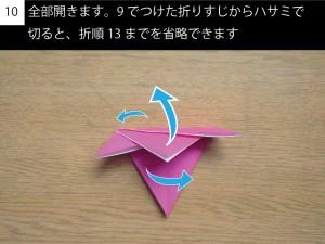 kakitsu10