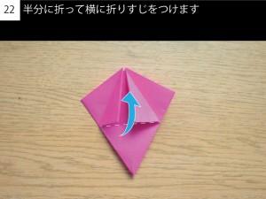 kakitsu22