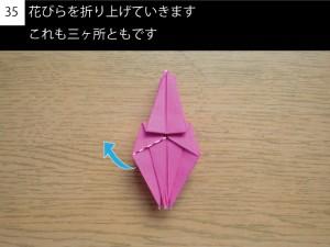 kakitsu35