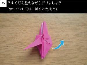 kakitsu36