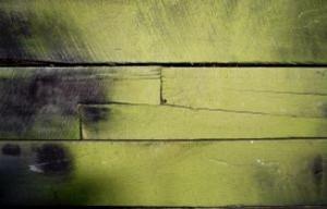 mildewed-wood_2875374-300x192