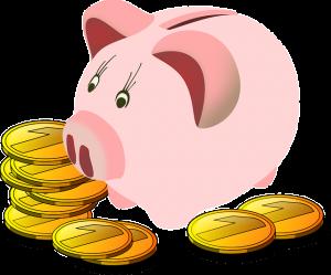 savings-box-161876_6401-300x249